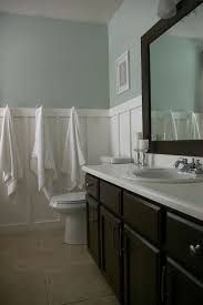 sherwin williams sea salt in a low light bathroom with dark wood