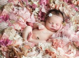 newborn photography nyc s girl nyc westchester newborn baby photographer