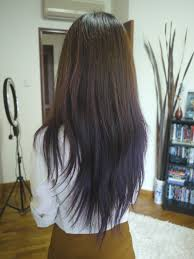 long hairstyles back view 1000 ideas about v layered haircuts on
