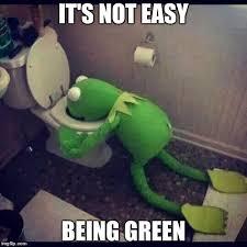 Easy Meme Generator - it s not easy being green meme generator imgflip