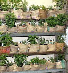 emejing planter design ideas gallery moder home design zeecutt us