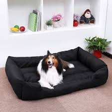 canapé pour chien grande taille canape pour grand chien achat vente pas cher