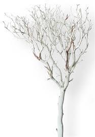 manzanita tree sandblasted manzanita tree 84 blooms and branches