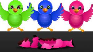 birds colors learning song kids nursery rhymes kids songs