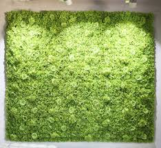 wedding backdrop grass 2 4m x 2 4m grass green wedding flower wall peony with dalia
