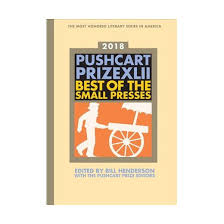 pushcart prize best of the small presses 2018 edition reprint