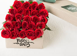roses valentines day valentines day gift ideas for same day delivery roses