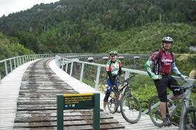 The New Zealand Cycle Trail Official Website Ohakune Old Coach Road Nz Cycle Trail Ruapehu Nz 8 Travel