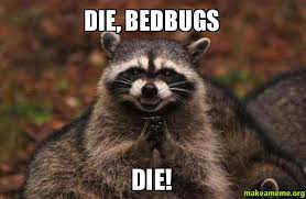 Bed Bug Meme - the many horrifying stages of bedbug grief and how to get through