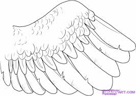 how to draw a wing step by step birds animals free online