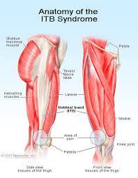 Back Knee Anatomy Iliotibial Band Syndrome Treatment Stretches U0026 Hip Pain
