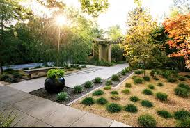 Backyard Desert Landscaping Ideas Picture 5 Of 17 Desert Backyard Designs In Landscaping Ideas