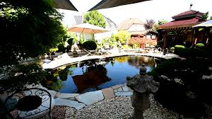 Haus Mit Kaufen Modern Koi Blog 1046 Traumteich Mit Haus Und Koi Zu Verkaufen
