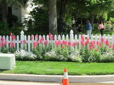 Cottage Curb Appeal - 101 ideas to add country cottage curb appeal to your home curb