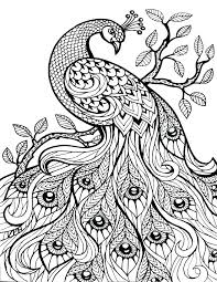 coloring pages henna art henna coloring pages www glocopro com