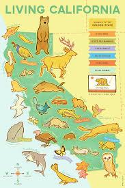 Hummingbird Map California Printed At Rare Device U2014 Erica Sirotich