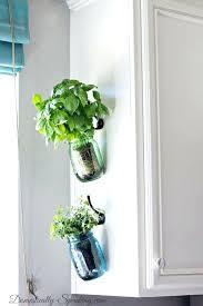 indoor wall garden indoor wall herb garden musicyou co