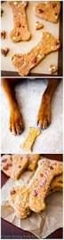 128 best dog treat u0026 dog food recipes images on pinterest dog