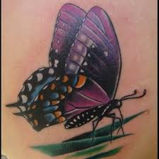 10 best purple butterfly 3d tattoos images on 3d