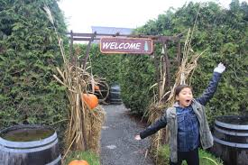 the spooktacular halloween spots we visited in victoria b c