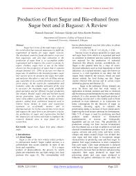 production of beet sugar and bio ethanol from sugar beet and it