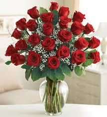 2 dozen elegance premium dozen roses