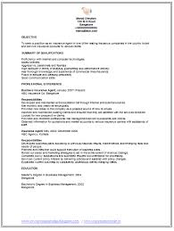 Insurance Agent Job Description For Resume Professional Curriculum Vitae Resume Template For All Job