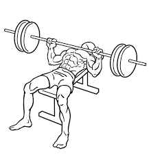 Bench Press Assistance Work Bench Press Chest Exercises Exercise Guides