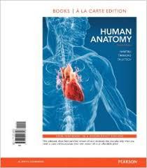 Anatomy And Physiology Place Human Anatomy Martini 7th Edition Human Anatomy Martini 6th 7th