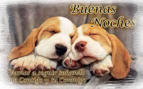 imagenes tiernas buenas noches amor conseguir imágenes tiernas de la noche nueva postales de buenas noches