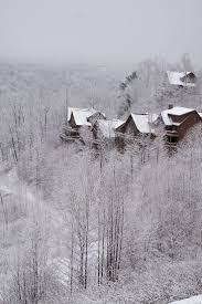 best 25 asheville nc cabins ideas on pinterest cabins in
