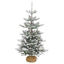 4ft pre lit battery operated snowy imperial blue spruce burlap feel
