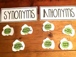 synonyms u0026 antonyms with green eggs fun worksheets anchor