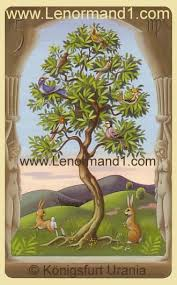 lenormand card meaning the tree lenormand software for