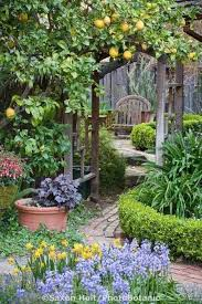 Fruit Garden Layout And Wonderful Fruit Garden Design Ideas Decoration Creative And