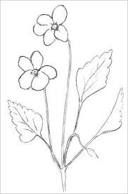 best 25 easy flower drawings ideas on pinterest how to draw