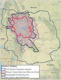 Bears Montana Hunting And Fishing - montana decides not to hunt grizzly bears this year nrdc