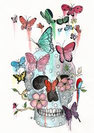 skulls and butterflies the watercolour diary
