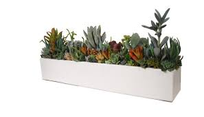 succulent concrete centerpiece arrangement 24