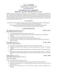 Lead Resume Salon Manager Resume 14 Uxhandy Com