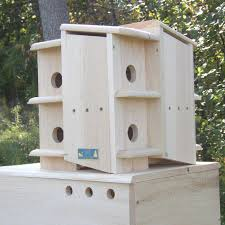martin house plans 17 best images about birdhouses on pinterest