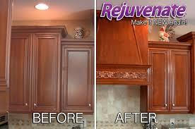 Kitchen Cabinet Restoration Kit Rejuvenate Cabinet U0026 Furniture Restoration Kit
