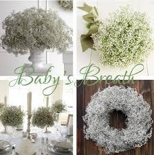 Baby S Breath Centerpiece Baby U0027s Breath Centerpieces And Bouquets Weddingbee