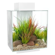 Fluval Edge Aquascape Fluval Edge Aquarium Set White 46 Litre Maidenhead Aquatics