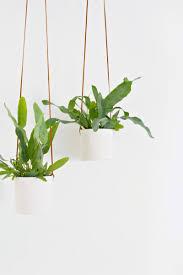 garden design garden design with top ideas to display indoor