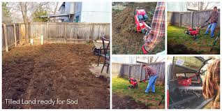 the burrow sod in 5 hours