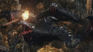 Ps4 Suspend Resume Bloodborne Co Op Gets Broken After Using Suspend Mode On Ps4
