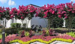 Atlanta Landscape Supply by Gibbs Landscape Residential And Commercial Landscaping Gibbs