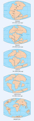 continents on map pangea continent map continental drift supercontinent