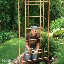 Ideas For Metal Garden Trellis Design Vegetable Garden Trellis Designs Copper Garden Trellis Free